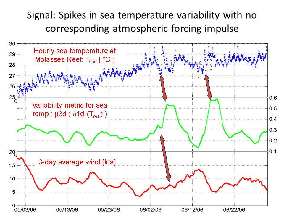 Slide: Signal: Spikes in sea temperature variability with no corresponding atmospheric forcing impulse